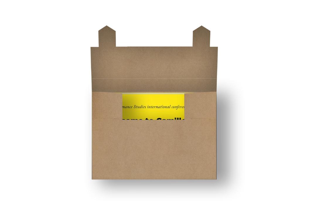 PSi #17 / Camillo 2.0 / Programma / Box / 2011
