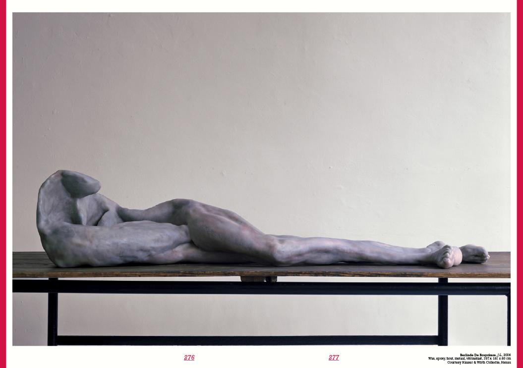 Niet Normaal / Publicatie / Berlinde De Bruyckere / 2009