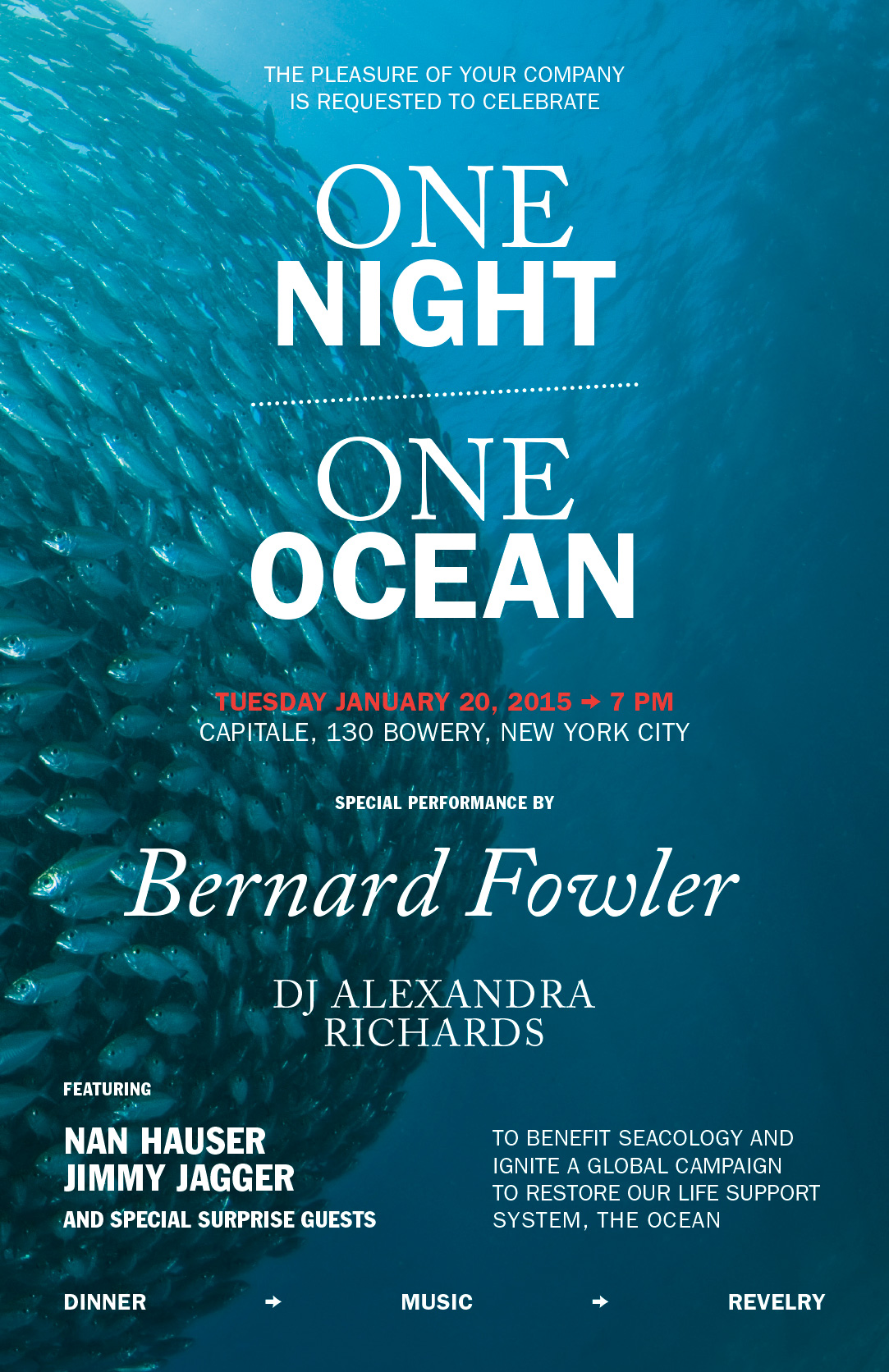 The Ocean Campaign / One Night One Ocean / Poster / Charity event / 2015