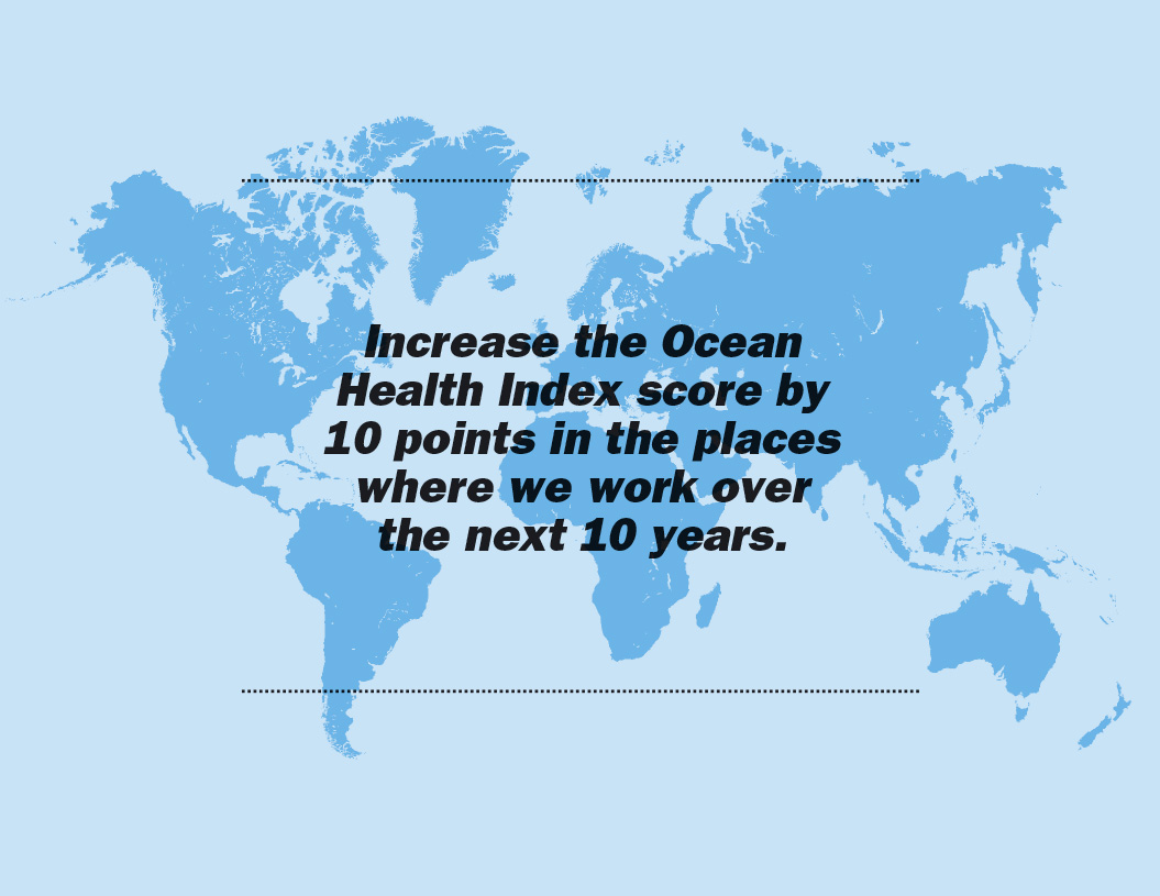 The Ocean Campaign / Manifesto NYC / New York City / Brochure / 2014