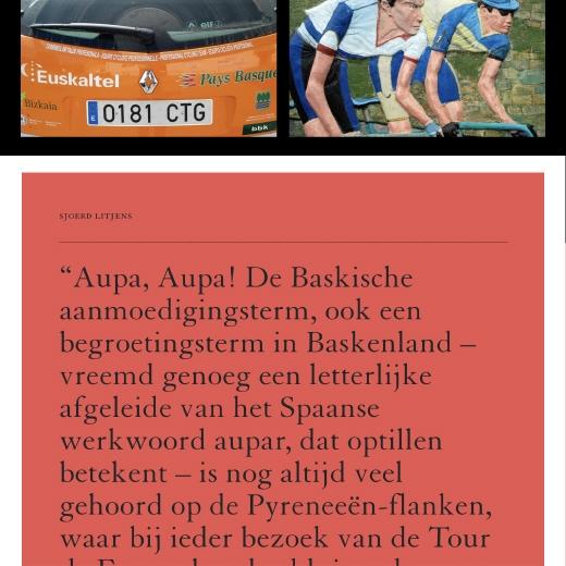 Sjoerd Litjens / Iban Mayo / Website / sjoerdlitjens.nl / 2019